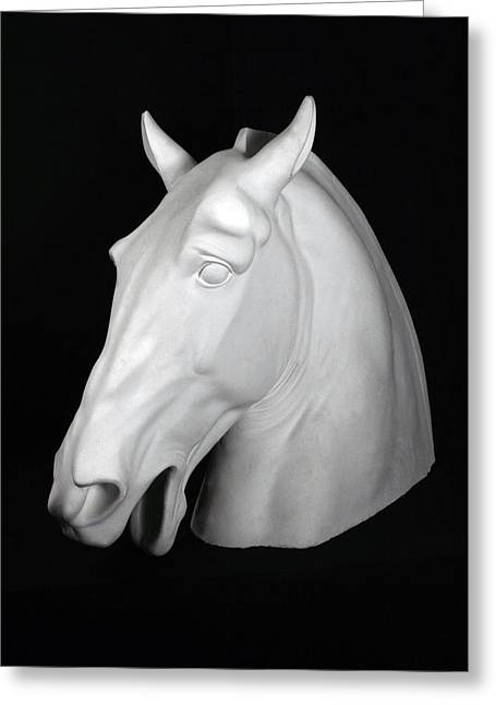 Bust Sculptures Greeting Cards - Horse Greeting Card by Andrea Felice