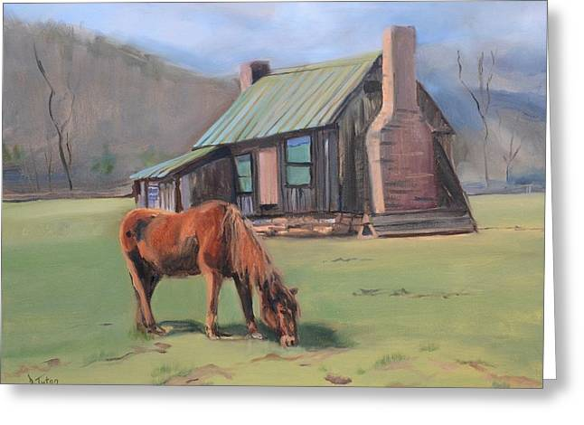 Slaves Greeting Cards - Horse at Pharsalia Plantation in Nelson County Virginia Greeting Card by Donna Tuten
