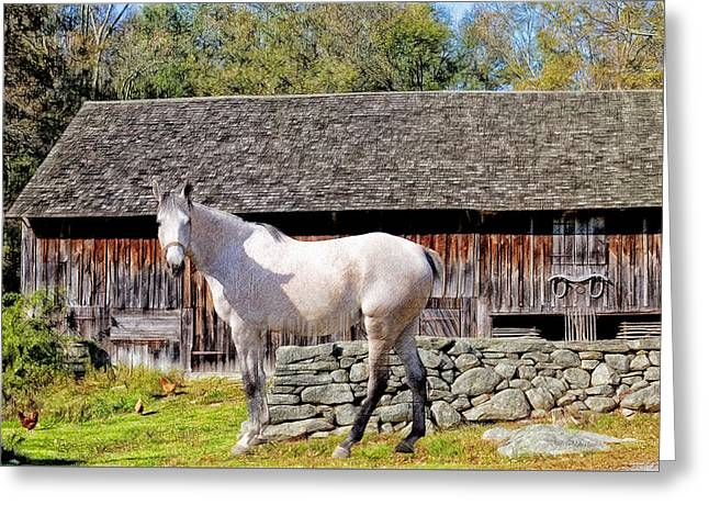 Horse At The Barn Greeting Card by Ericamaxine Price