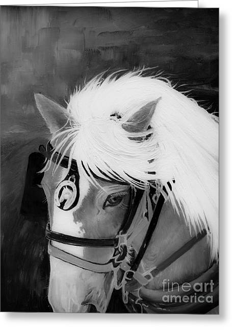 Horse And Cart Greeting Cards - Amos- Black and White Horse - Adams Ribg Greeting Card by Jan Dappen