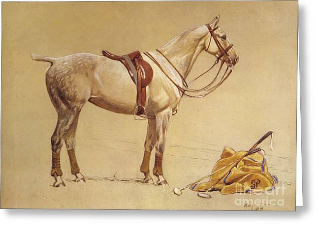 Cecil Charles Windsor (1870-1935) Greeting Cards - Horse Greeting Card by Cecil Charles Windsor Aldin