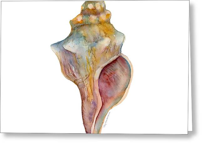 Shell Greeting Cards - Horse Conch Shell Greeting Card by Amy Kirkpatrick