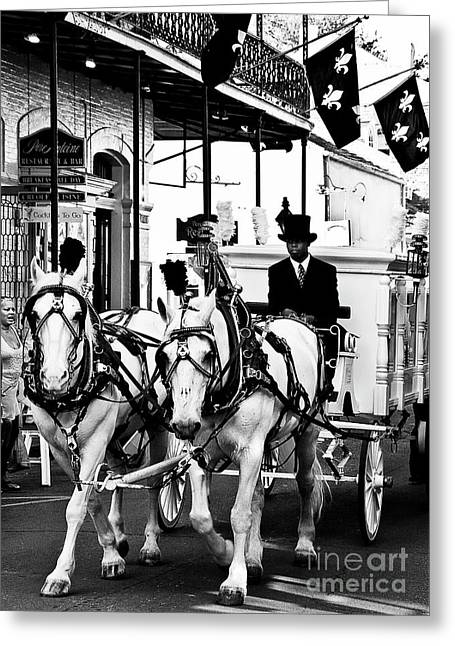Horse Drawn Funeral Carriage Greeting Card by Kathleen K Parker