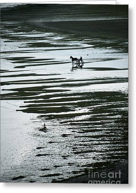 Horse And Cart Greeting Cards - Horse-drawn gig on beach Greeting Card by Girts Gailans