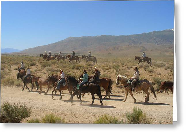 Horse Drive from June Lake to Bishop California Greeting Card by Christine Till