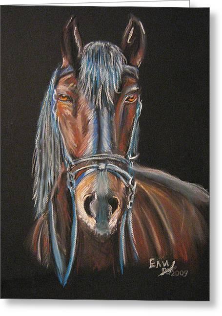 Horse Greeting Card by Eli Marinova