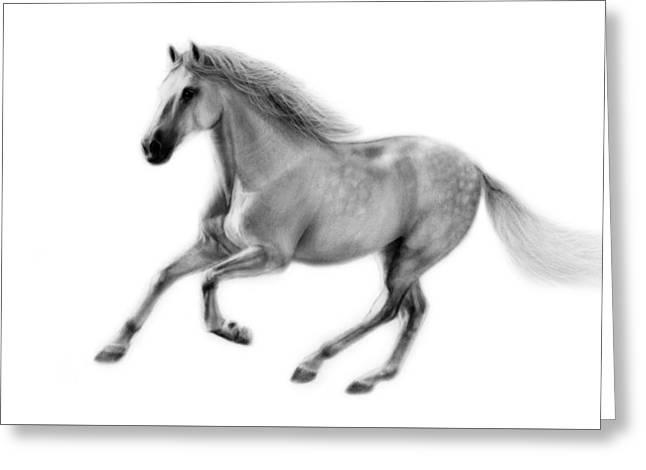 Photorealism Greeting Cards - Horse Furioso Greeting Card by Danguole Serstinskaja