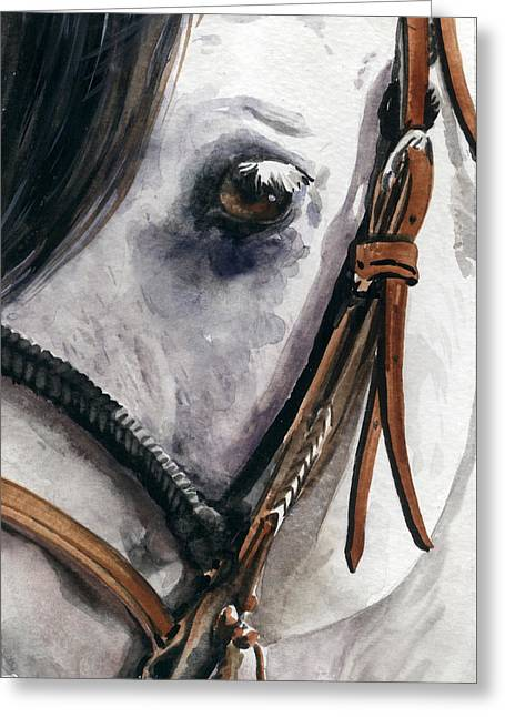 Western Western Art Greeting Cards - Horse Head Greeting Card by Nadi Spencer