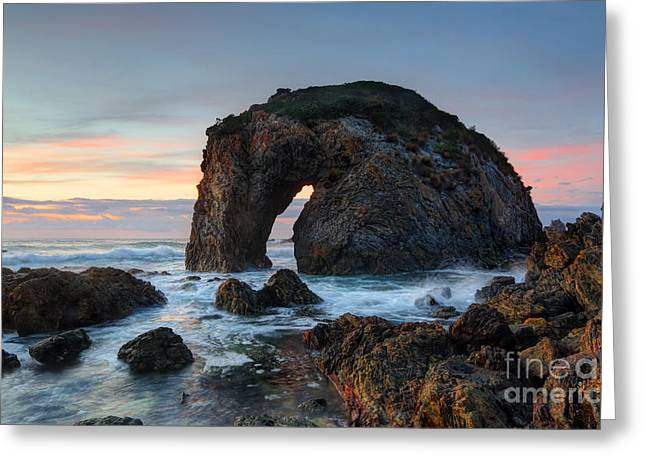 Caost Greeting Cards - Horse Head Rock Bermagui Greeting Card by Leah-Anne Thompson