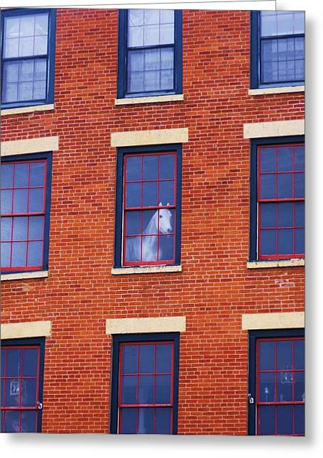 Horse In An Upstairs Window Greeting Card by Anna Villarreal Garbis