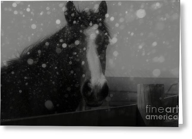 Horse In Falling Snow Greeting Card by J M Lister