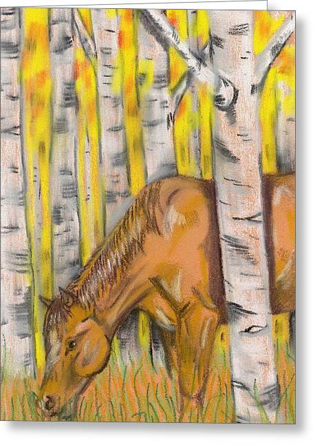 Birch Tree Pastels Greeting Cards - Horse In The Birch Greeting Card by Phyllis Muller
