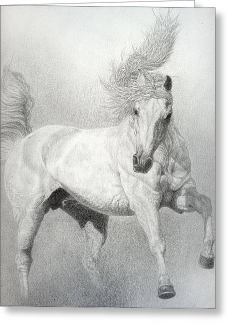 Livestock Drawings Greeting Cards - Horse Greeting Card by Jennifer Nilsson