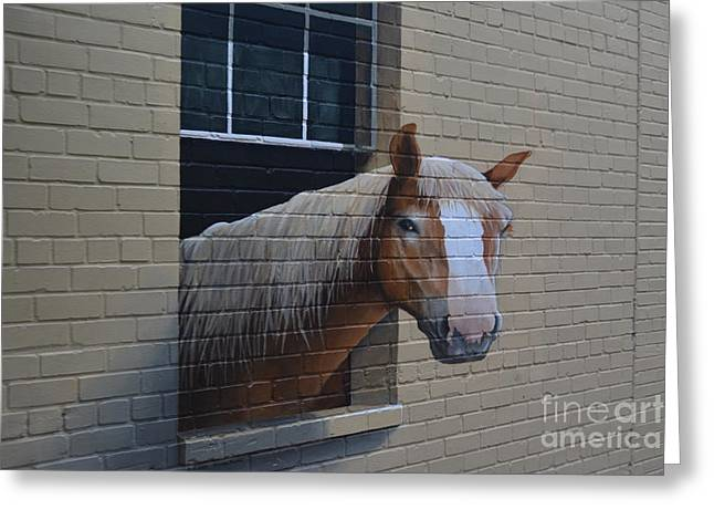 Slaves Greeting Cards - Horse on a Brick Wall Greeting Card by Don Columbus