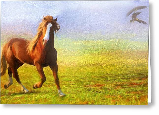 Contemporary Equine Greeting Cards - Horse On The Prairie Greeting Card by Georgiana Romanovna