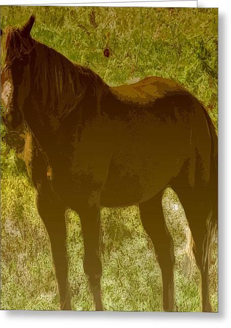 Horse Patch Greeting Card by Debra     Vatalaro