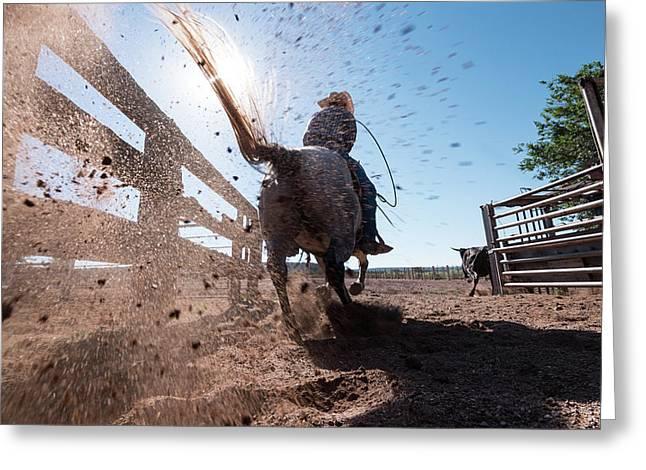 Horse Power Greeting Card by Steve Gadomski