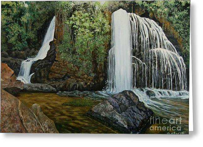 Caroline Street Greeting Cards - Horse Shoe Falls   Greeting Card by Caroline Street