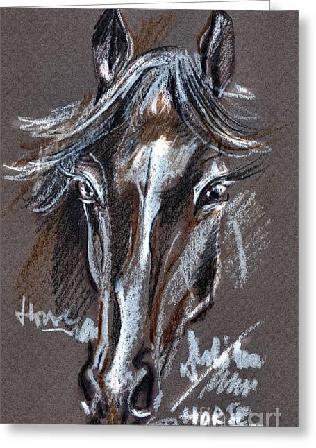 Horse Study Greeting Card by Daliana Pacuraru