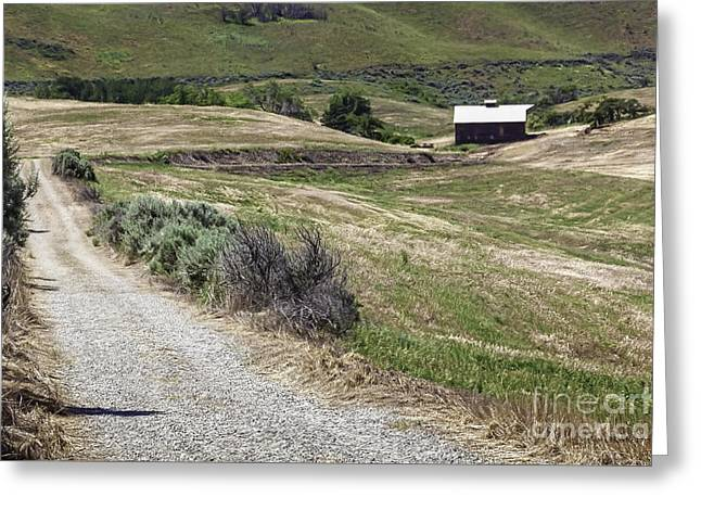 Nature Greeting Cards - Horselake Ranch House Greeting Card by Jean OKeeffe Macro Abundance Art