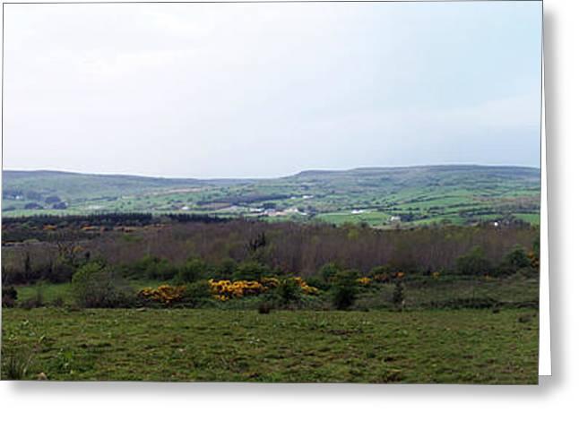 Sligo Greeting Cards - Horses at Lough Arrow County Sligo Ireland Greeting Card by Teresa Mucha