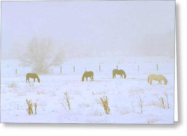 Horses Grazing in a Field of Snow and Fog Greeting Card by Steve Ohlsen