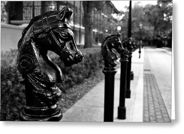Recently Sold -  - Old Street Greeting Cards - Horses in old orleans Greeting Card by David Lee Thompson