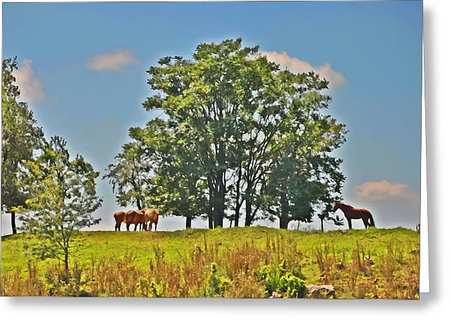 Amish Farms Greeting Cards - Horses on a Hill Greeting Card by Bill Cannon