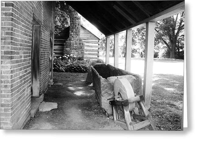 Horses Water Trough Greeting Card by Peggy Leyva Conley