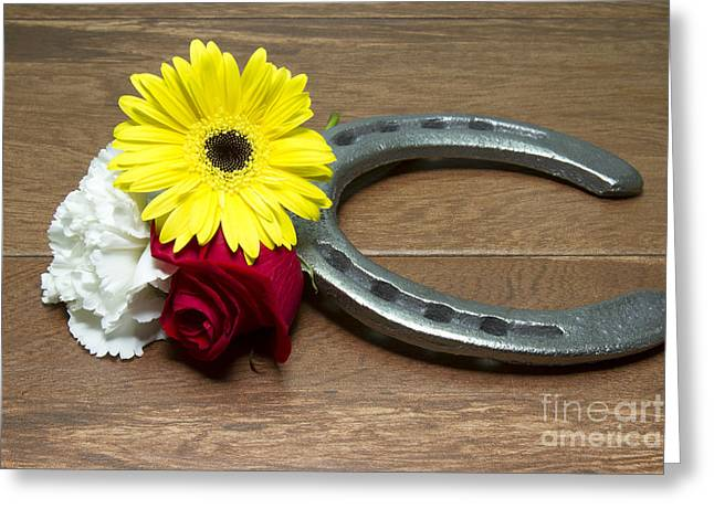 Preakness Stakes Greeting Cards - Horseshoe on Wood with Three Flowers of the Triple Crown Greeting Card by Karen Foley