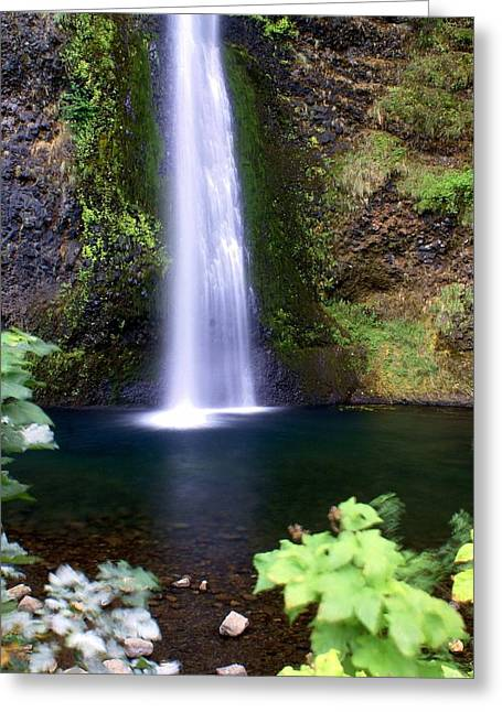 Marty Koch Greeting Cards - Horsetail Falls Greeting Card by Marty Koch