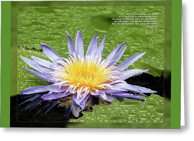 Winter Promise Greeting Cards - Hosea 6 3 Greeting Card by Dawn Currie