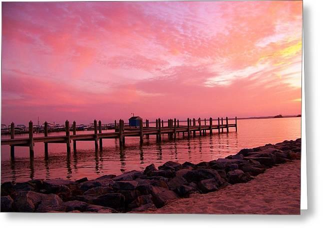 Hot Bay Sunset Greeting Card by Trish Tritz