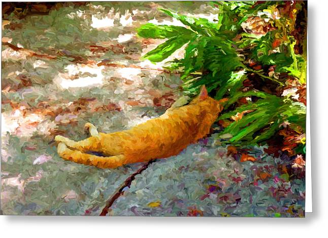 Key West Greeting Cards - Hot Cat Greeting Card by David  Van Hulst