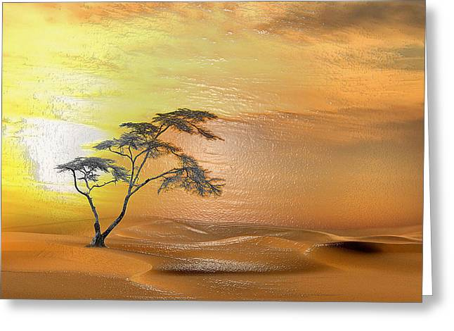 Sahara Sunlight Greeting Cards - Hot Moaning Greeting Card by Scott Mendell