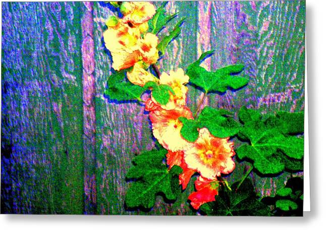 Hot Summer Afternoon Greeting Card by  Connie Valasco