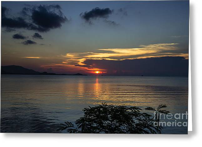 Michelle Greeting Cards - Hot Sunset Greeting Card by Michelle Meenawong