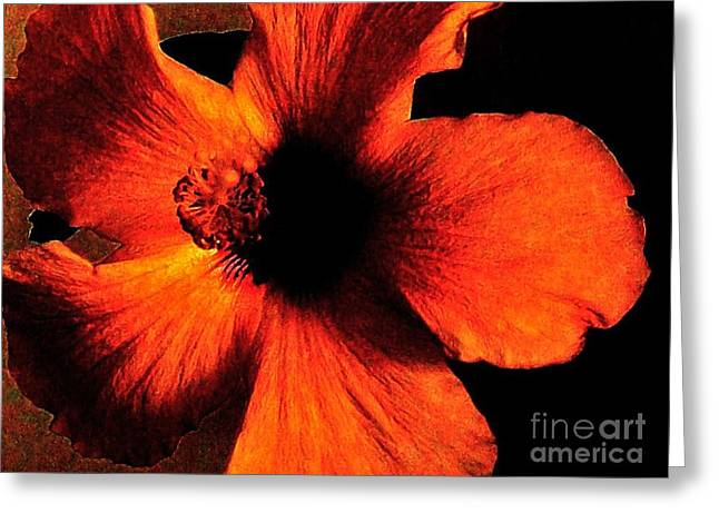 All Occasion Card  Greeting Cards - Hotfire Hibiscus Greeting Card by Marsha Heiken