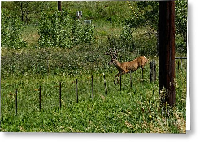 Boonies Greeting Cards - Hotshot Greeting Card by Jon Burch Photography