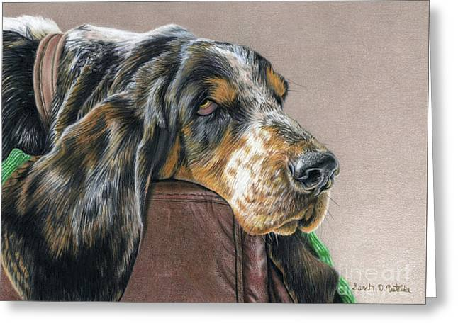 Photo-realism Greeting Cards - Hound Dog Greeting Card by Sarah Batalka