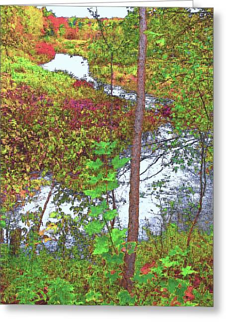 Housatonic River 2 - New England Greeting Card by Steve Ohlsen