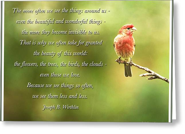House Finch, Invisible Beauty Quote Greeting Card by A Gurmankin