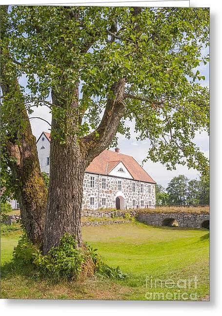 Red Roofed Barn Greeting Cards - Hovdala Slott behind tree Greeting Card by Antony McAulay