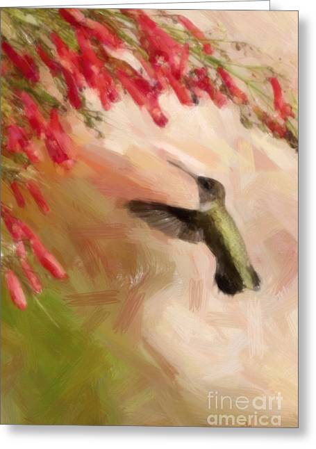 Hovering Greeting Cards - Hovering in a Wing Beat Greeting Card by Barbara Rabek