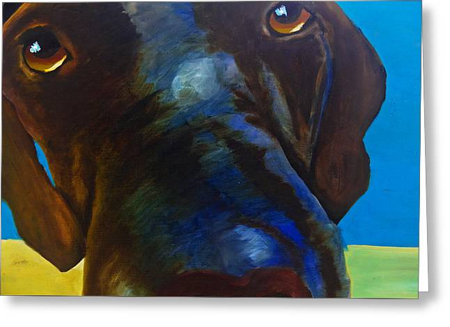 Chocolate Lab Greeting Cards - How Can You Resist Greeting Card by Roger Wedegis