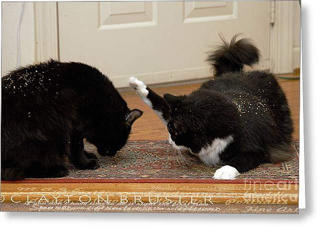 Bruster Greeting Cards - How Cat Fights Start Greeting Card by Clayton Bruster