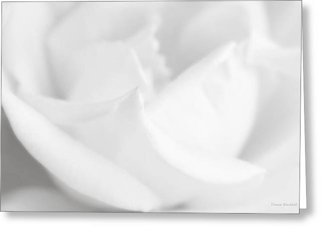 Rose Petals Greeting Cards - How I Feel In Your Arms Greeting Card by Donna Blackhall