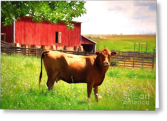 Healthy Greeting Cards - How Now Brown Cow Greeting Card by Janice Rae Pariza