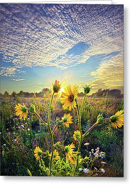 How The Story Goes Greeting Card by Phil Koch