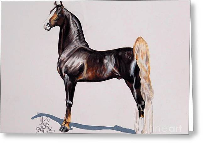 Horse Images Drawings Greeting Cards - HS Daydreams Premier Night - Saddlebred Stallion Greeting Card by Cheryl Poland